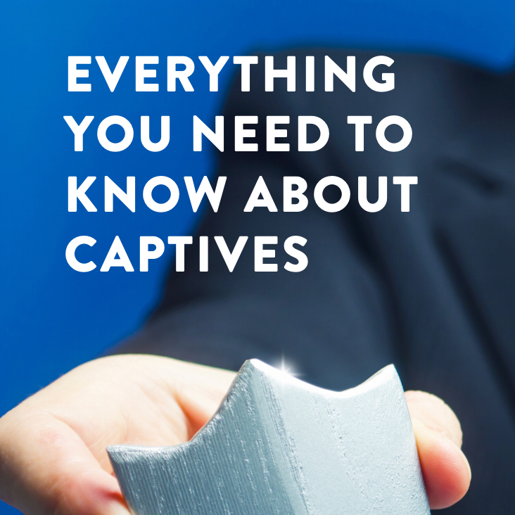 Everything You Need to Know About Captives-1